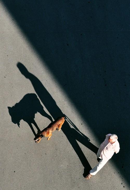 fot. Myszko robi zdjęcia/ Marcin Myszkowski