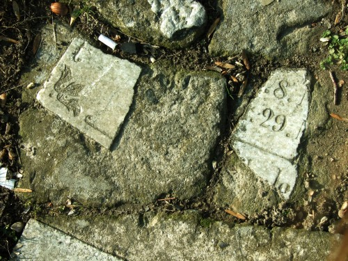(Polski) Marcelina Jakimowicz – Delikatna nieobecność. Opuszczone świątynie i cmentarze jako miejsca (nie) pamięci