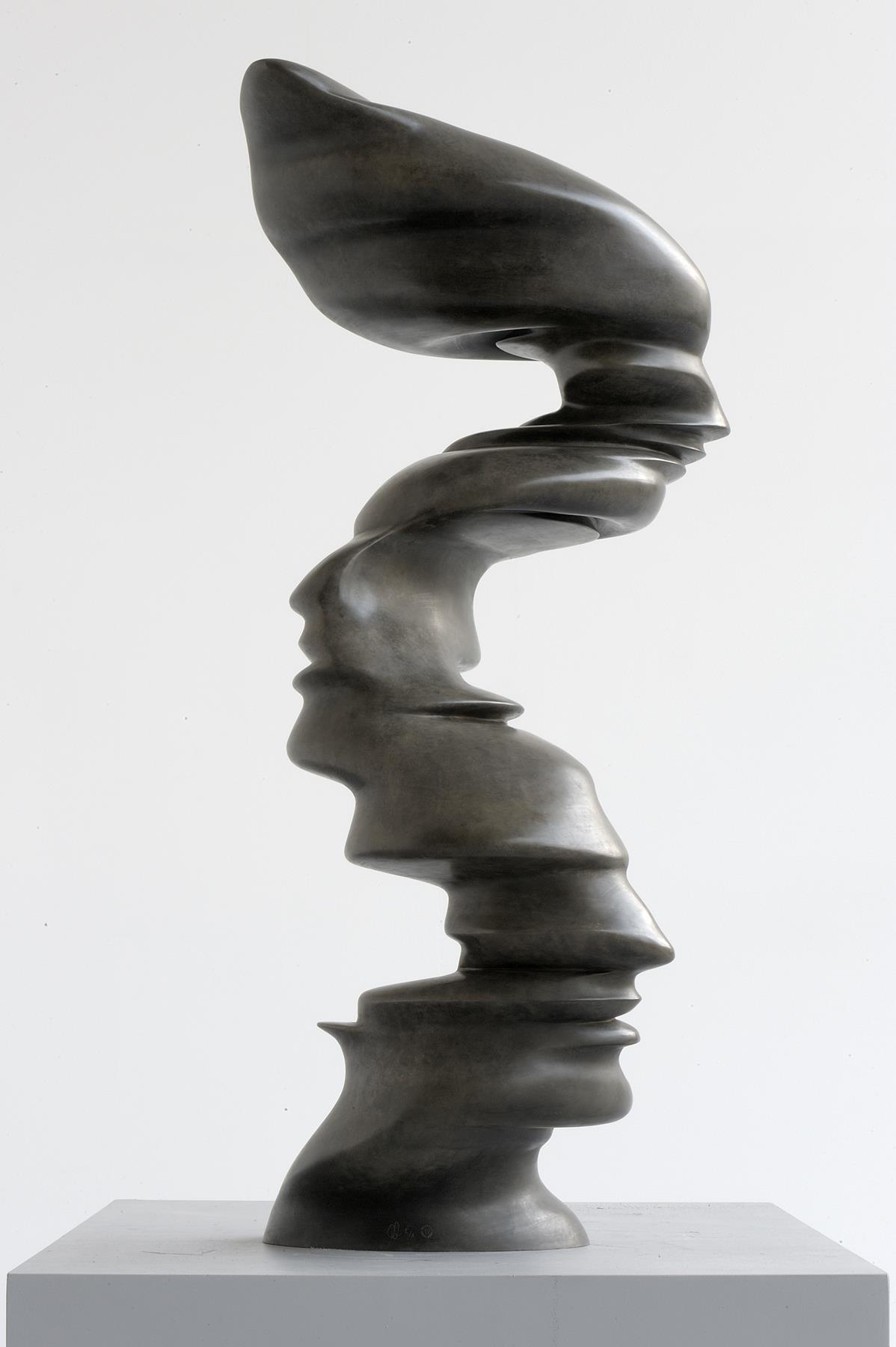 Tony Cragg, Line of Thought, 2002, dim 120 × 60 × 55, bronze, photo Charles Duprat