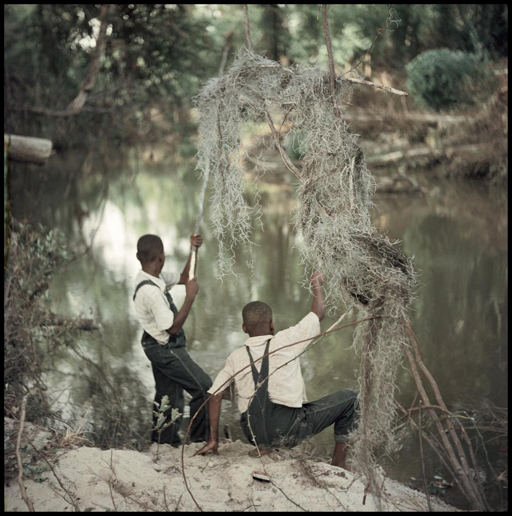 Bez tytułu, Shady Grove, Alabama, 1956, z reportażu Segregacja © dzięki uprzejmości The Gordon Parks Foundation