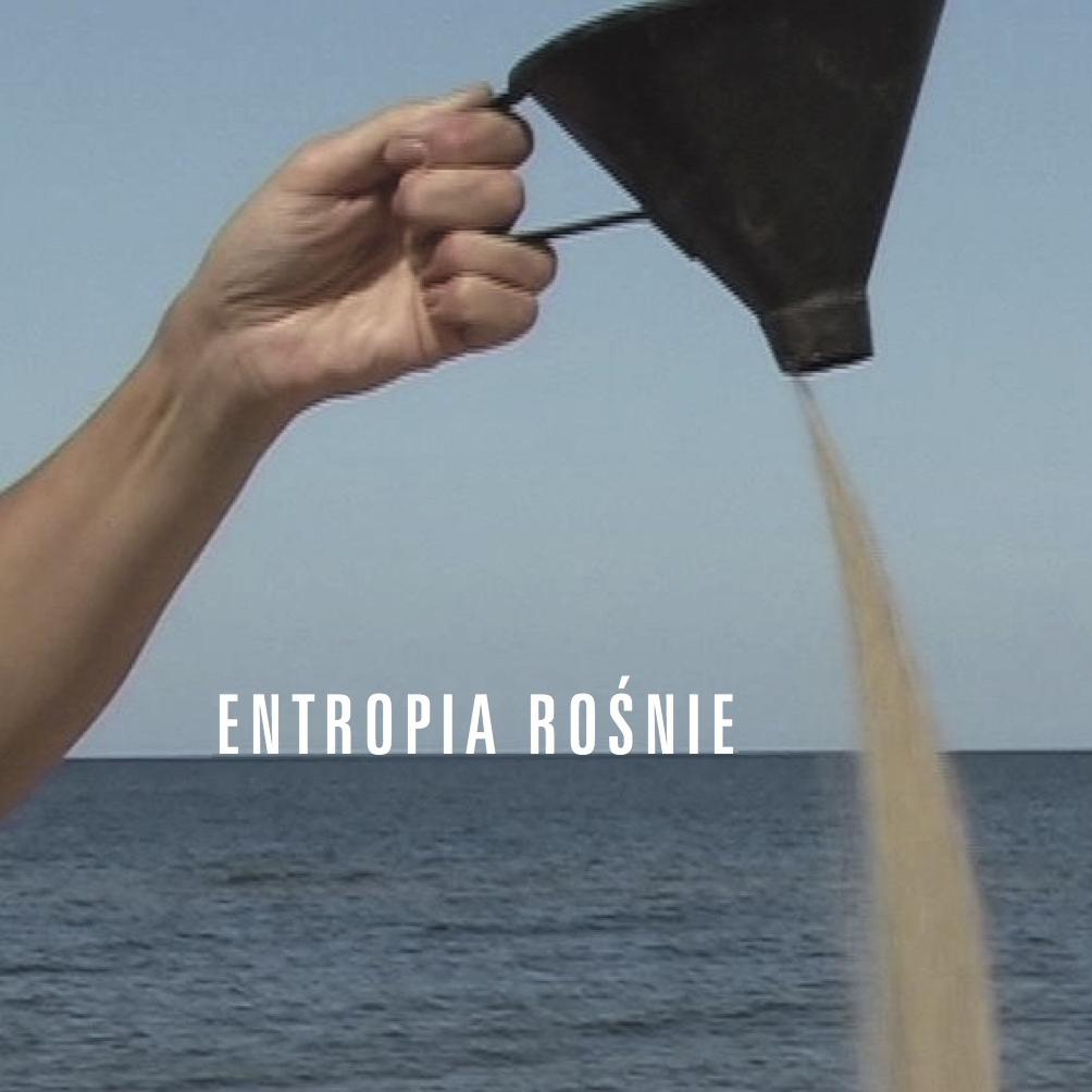 Entropia rośnie. Fot. Alicja i Mariusz Jodko
