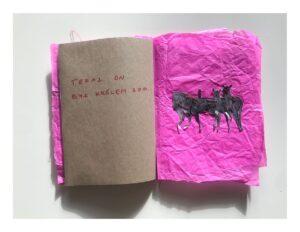 Zdjęcie otwartego zina. Lewa strona jest z brązowego papieru, na niej odręczny napis czerwonym flamastrem. Prawa strona jest z różowego pogniecionego papieru, na niej przyszyto czerwoną nicią zdjęcia saren.