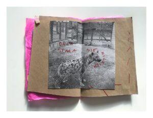 Zdjęcie zina. Do kartek z brązowego papieru przyszyto czerwoną nicią czarno-białe zdjęcie hieny. Na zdjęciu odręczne napisy wykonano czerwonym flamastrem.