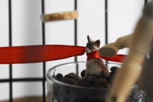 Zbliżenie na element większej instalacji. Za kratami stoi przezroczysta filiżanka wypełniona ziarnami kawy, w nich stoi figurka kota z czerwoną wstążką na szyi.
