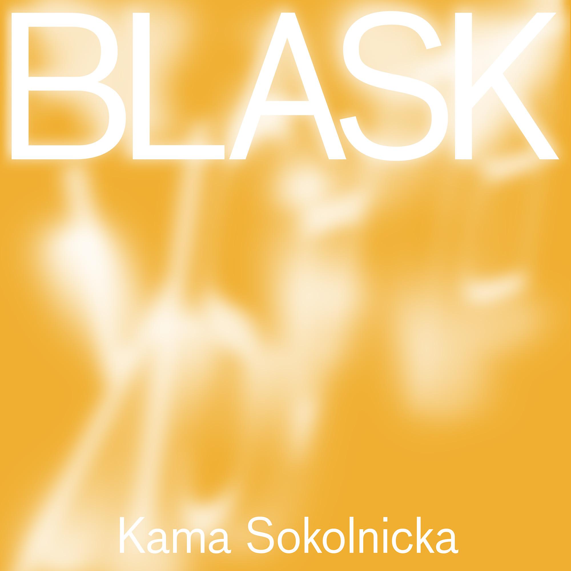 Kama Sokolnicka. Glare