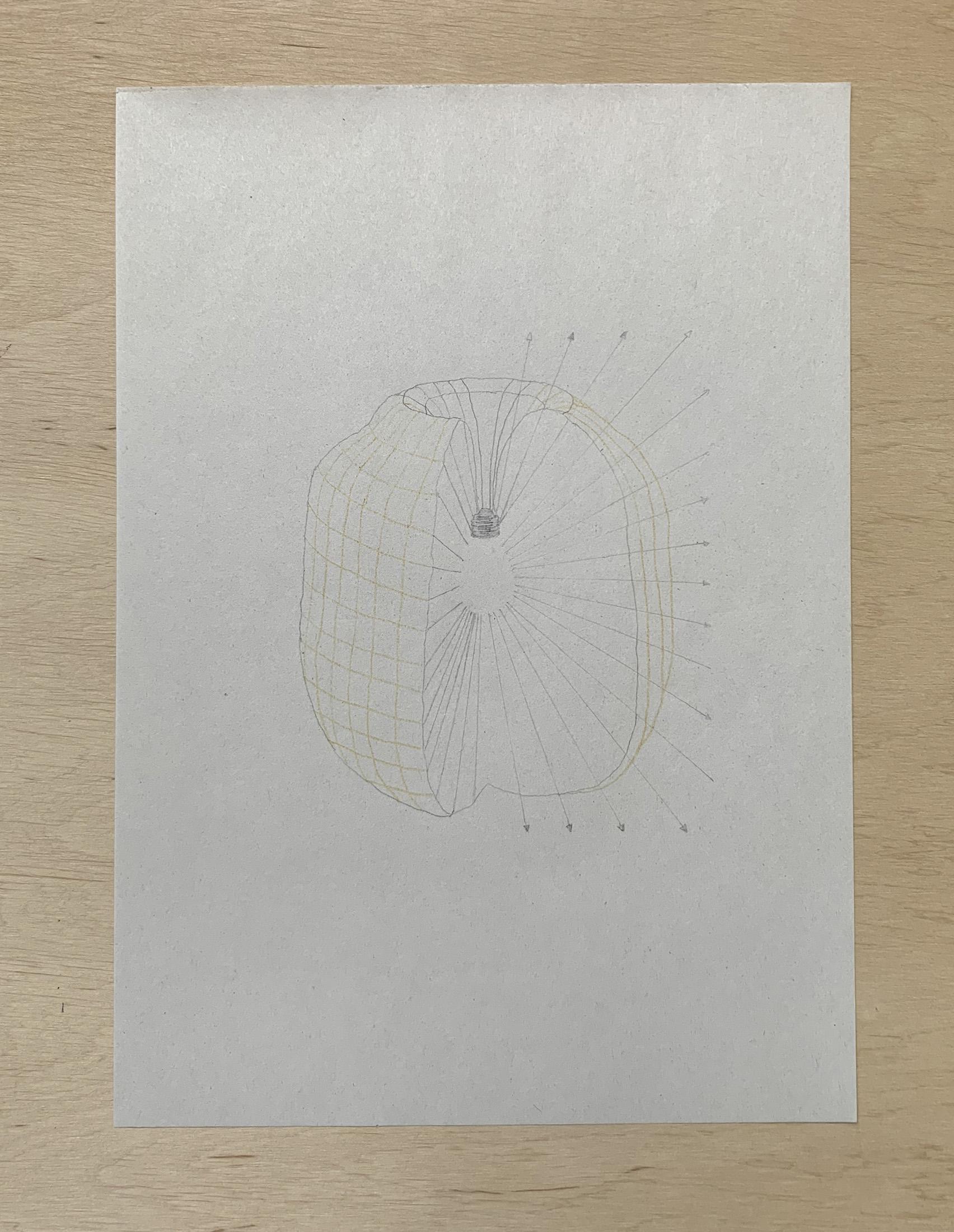 Light Distribution Area, 2021, drawing